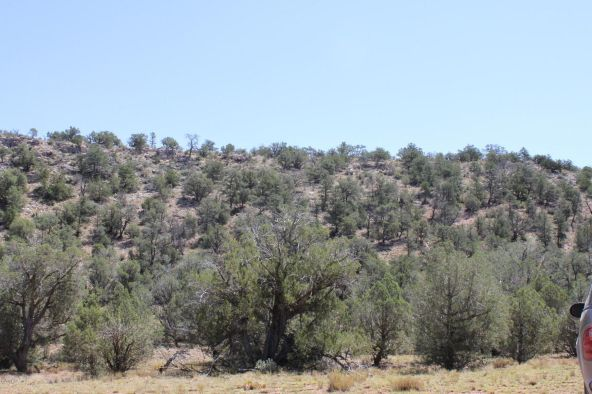 273 Arizona Rd., Ash Fork, AZ 86320 Photo 1