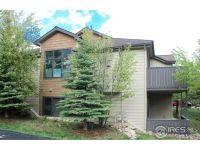 Home for sale: 617 Park River Pl., Estes Park, CO 80517