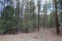 Home for sale: Pino Real, Brazos Meadows, Tierra Amarilla, NM 87575