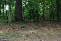 Home for sale: 10 Mallard Creek Rd., Berkeley Springs, WV 25411