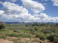 Home for sale: 2455 E. Hawkins, Cortez, CO 81321