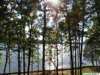 Home for sale: * Sunny Brook Farm Rd., Guntersville, AL 35976
