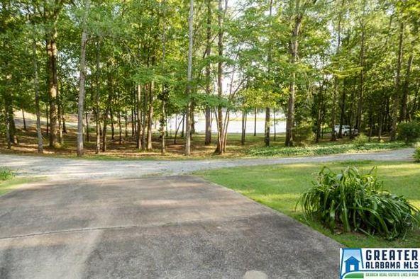 550 Blue River Dr., Lincoln, AL 35096 Photo 51