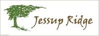 Home for sale: 500 Sandra Jessup Ct., Greensboro, NC 27455