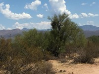 Home for sale: App 16801 E. Cavedale Dr., Rio Verde, AZ 85263