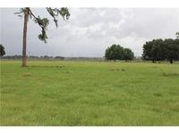 Home for sale: 8335 Alturas Rd., Bartow, FL 33830