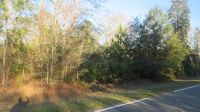 Home for sale: 401 Pine St., Homeland, GA 31537