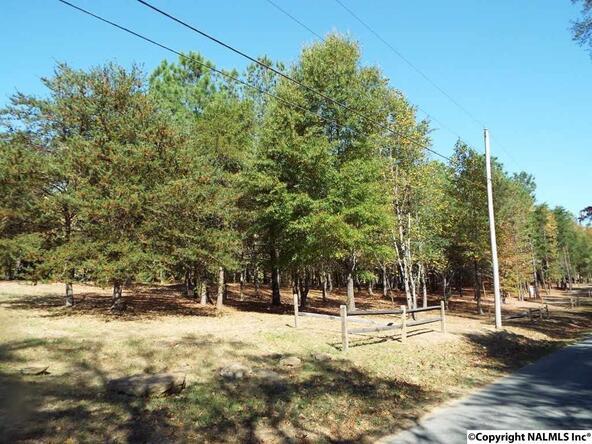 10 S. County Rd. 89, Mentone, AL 35984 Photo 27