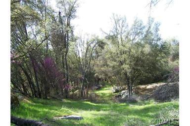 0 Lone Star Cir., Mariposa, CA 95338 Photo 10