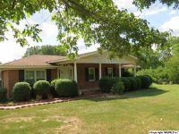 Home for sale: 540 Buck Island Dr., Guntersville, AL 35976