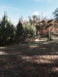 Home for sale: Tbd Cartwright Mountain Pl., Mountainburg, AR 72946