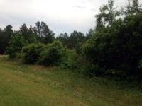 Home for sale: 29 Tarpley Rd., Danville, GA 31017
