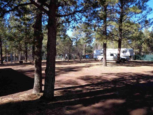 3530 Petes Retreat, Lakeside, AZ 85929 Photo 5