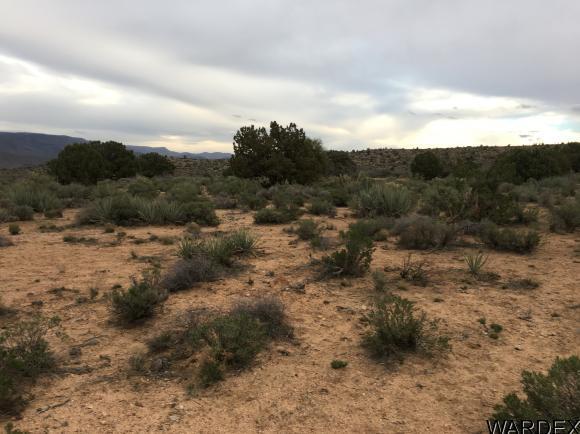7340 N. Frerichs Ranch Rd., Hackberry, AZ 86411 Photo 21