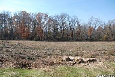 Lot 11 Ridgewood Dr., Henderson, TN 38340 Photo 5
