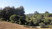 Home for sale: 471 Hawk Ridge Ln., Watsonville, CA 95076