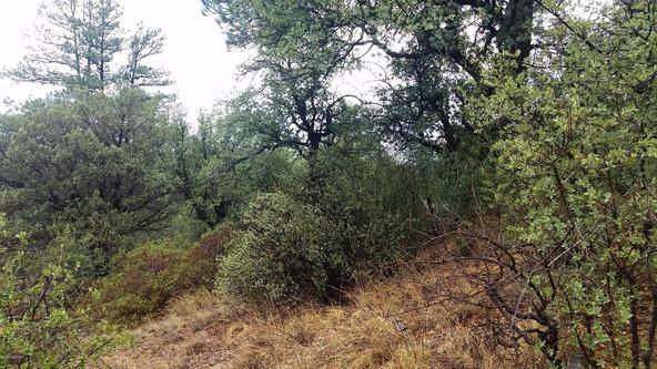 2300 W. Loma Vista Dr., Prescott, AZ 86305 Photo 8