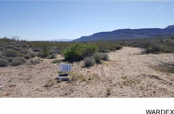 4332 W. Sunset Rd., Yucca, AZ 86438 Photo 49