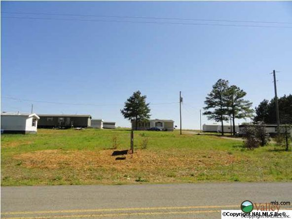 28362 Jennings Chapel Rd., Toney, AL 35773 Photo 1