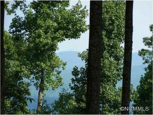 515 Hagen Dr., Hendersonville, NC 28739 Photo 2