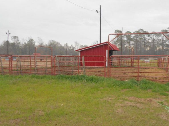 409 County Rd. 6, Black, AL 36314 Photo 40