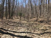 Home for sale: 0 Texas Hollow Rd., Hector, NY 14891