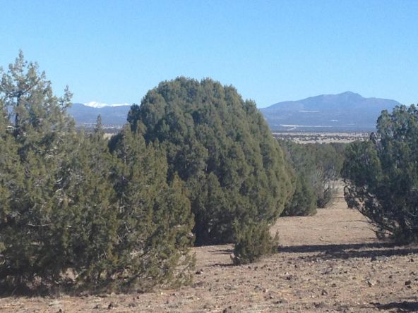 246 Antelope Run, Ash Fork, AZ 86320 Photo 2