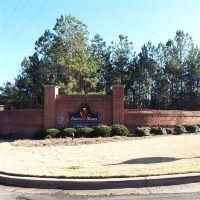 Home for sale: 1010 Emerald Shores Dr., White Plains, GA 30678