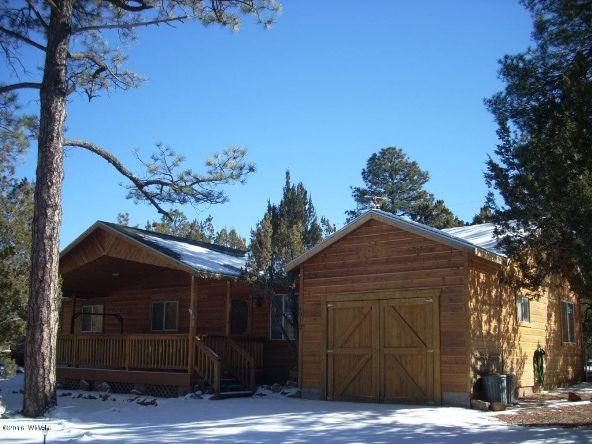 1919 Twin Pines Trail, Overgaard, AZ 85933 Photo 28