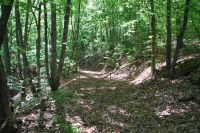 Home for sale: Woodall Mountain Rd., Pickens, SC 29671