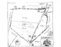 Home for sale: 000 Rainey Creek Rd., McKenney, VA 23872