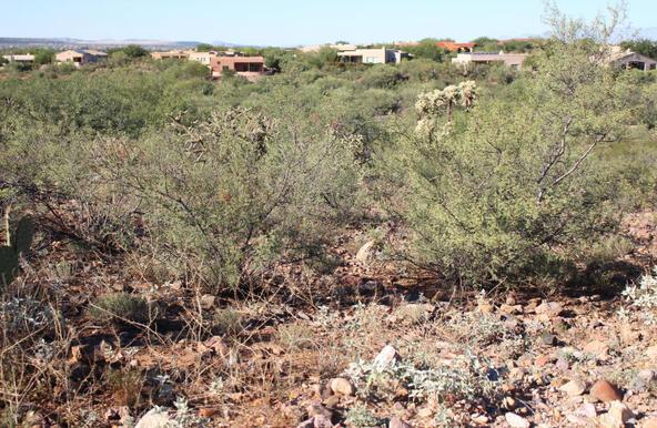 973 E. Sylvester Spring, Green Valley, AZ 85614 Photo 11