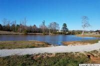 Home for sale: 29 Caldera Dr., Athens, AL 35613