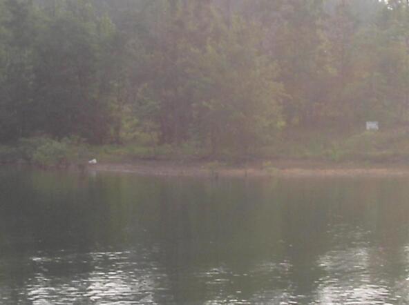 234 Cr 907, Crane Hill, AL 35053 Photo 1