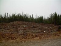 Home for sale: Lot 7 Loon Rd., Berlin, NH 03570
