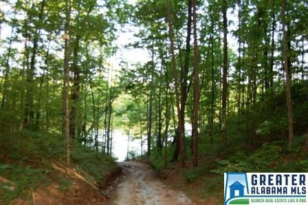 12 Rock Creek Co Rd. 4312, Wedowee, AL 36278 Photo 4
