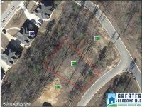 Home for sale: 204 Stoneykirk Way, Pelham, AL 35124