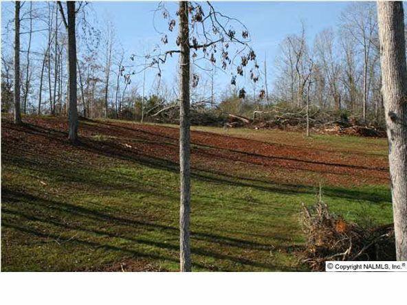 Buck Island Dr., Guntersville, AL 35976 Photo 3