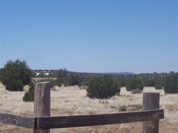 56731 N. Potrero Parkway, Seligman, AZ 86337 Photo 8
