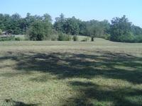 Home for sale: 1251 N. Allen Rd., Hendersonville, NC 28792