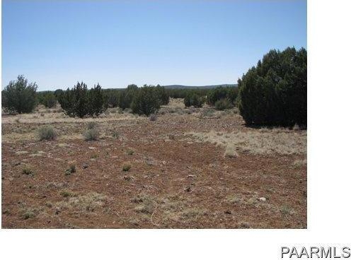 292 Sabrina, Ash Fork, AZ 86320 Photo 10