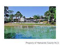 Home for sale: 6593 River Run Blvd., Weeki Wachee, FL 34607