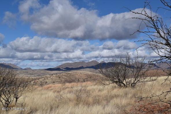 58 Circulo Montana, Patagonia, AZ 85624 Photo 18