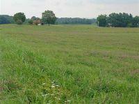 Home for sale: Lot 3 Shelton Chapel Rd., Parrottsville, TN 37843