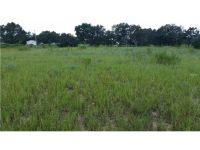 Home for sale: 13642 Citrus Farms Dr., Astatula, FL 34705