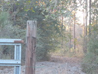 Home for sale: Tbd Milligan Rentz/Clements Kretlow Rd., Sparks, GA 31647
