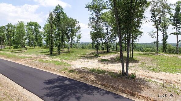 127 Ridgehaven, Hot Springs, AR 71913 Photo 2