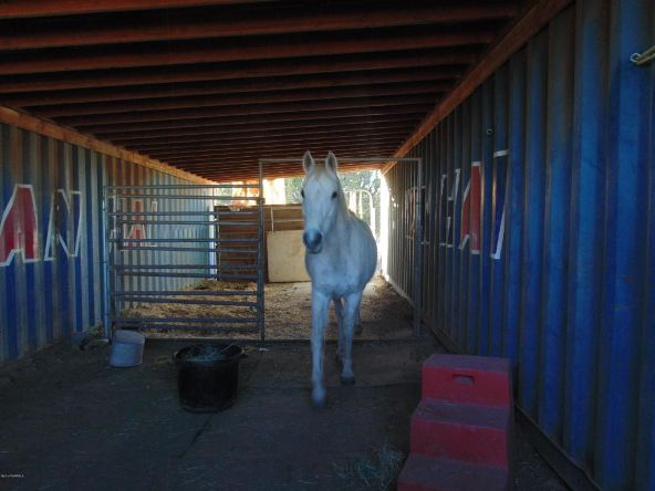 38236 W. Howling Coyote, Seligman, AZ 86337 Photo 27