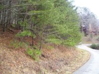 Home for sale: 45 Lot# Cliff's. Edge Rd., East Bernstadt, KY 40729