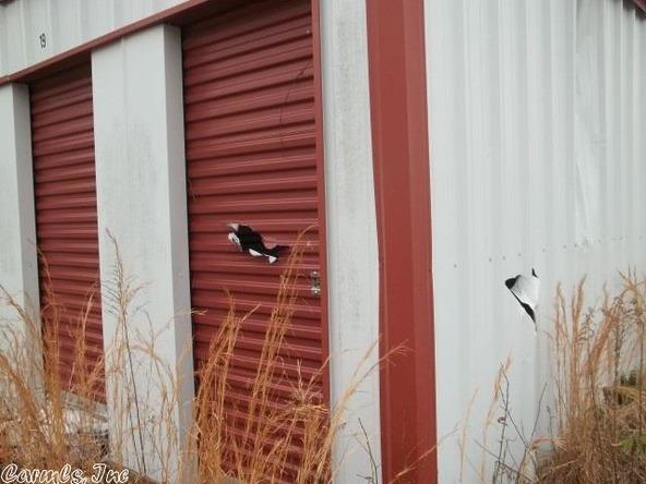 8221 Hwy. 63, Pine Bluff, AR 71603 Photo 6